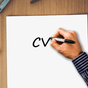 CV, resume, job