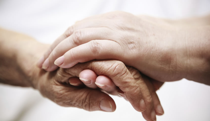 Immigration law specialists set up free clinic in Queensland