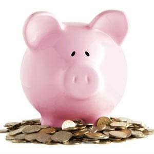 salary piggy bank earnings