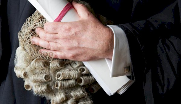 Barrister wig, judge